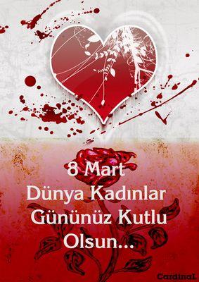 8 Mart 2013 Dünya Kadınlar Günü Etkinlikleri