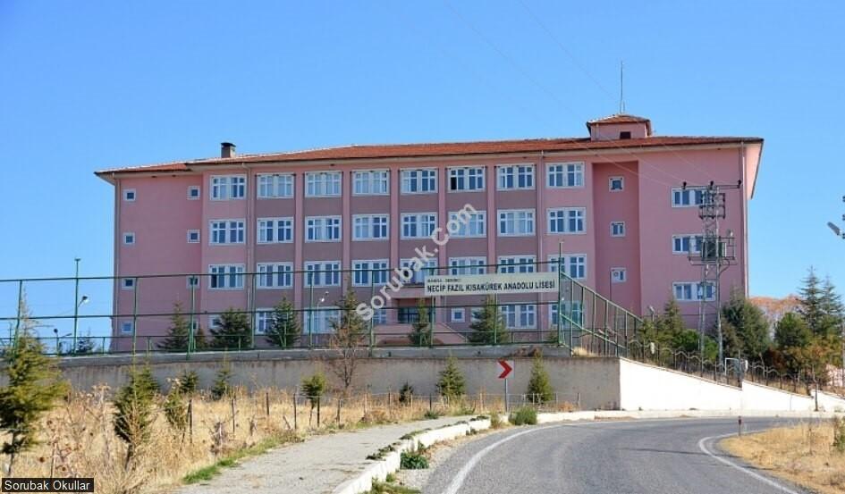 Demirci Necip Fazıl Kısakürek Anadolu Lisesi