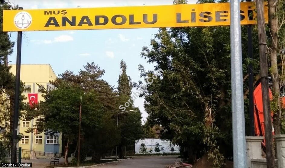Muş Anadolu Lisesi
