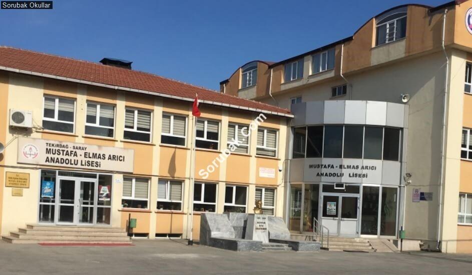 Mustafa Elmas Arıcı Anadolu Lisesi