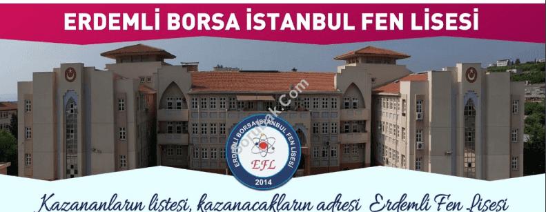 Erdemli Borsa İstanbul Fen Lisesi