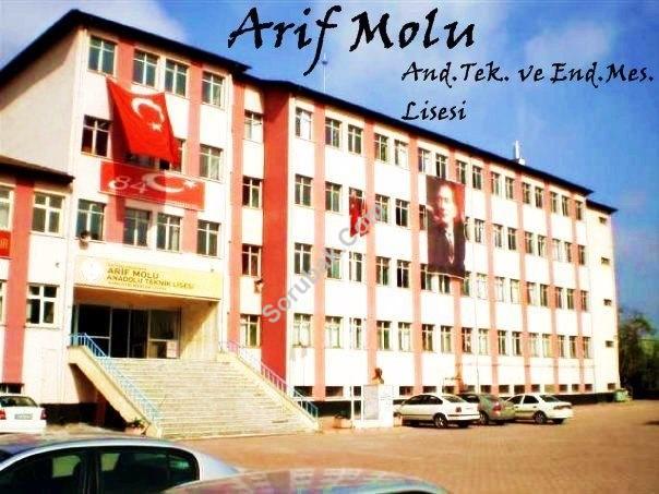 Arif Molu Mesleki ve Teknik Anadolu Lisesi