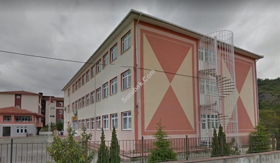 Niksar Prof. Dr. Mustafa Erol Turaçlı Fen Lisesi