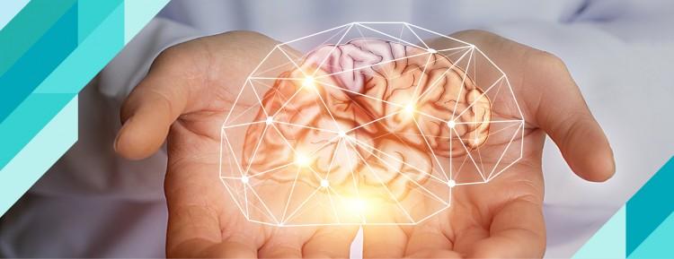 Beyninizi Anlamanız Öğrenmenize Nasıl Yardımcı Olabilir?